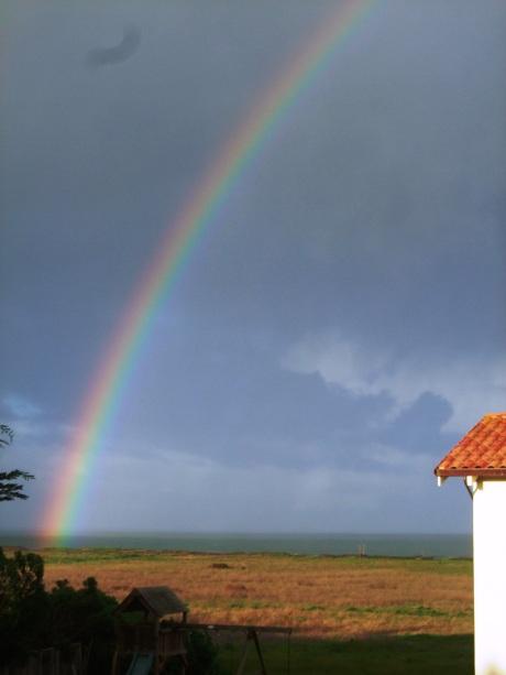rainbow-005
