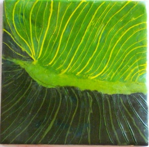 Cala Leaf Stage V 018-crop