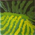 Calla leaf Stage III 008-crop