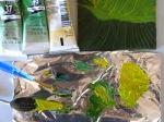 Calla leaf  Stage IV oils