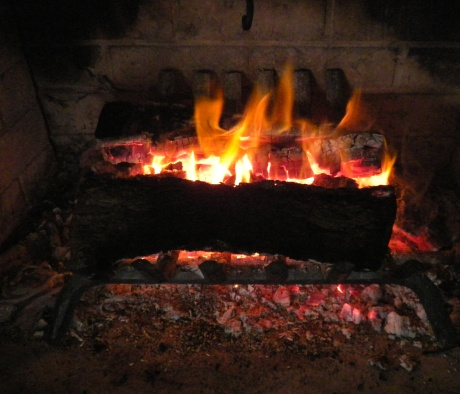 fire 008