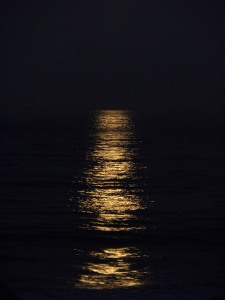 moonlight on water 032