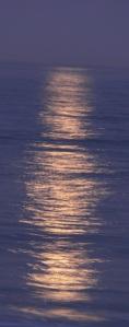 moonlight on water  041 dk-narrow